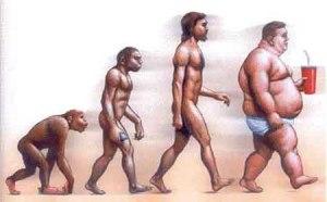 obese_darwin_evolution