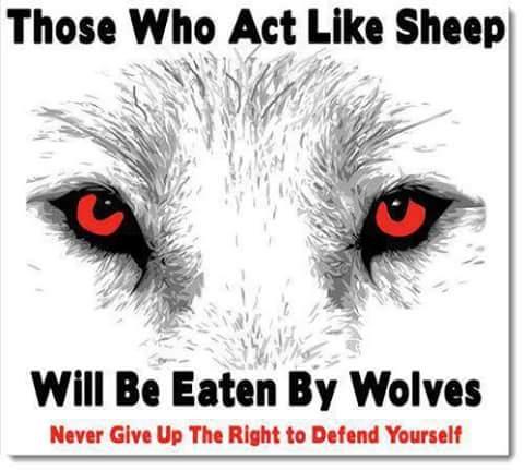 act_like_sheep